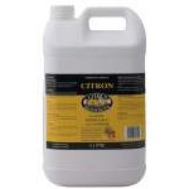 20015A CITRUS CITRON DISHWASH AND ALL PURPOSE DETERGENT 5LT