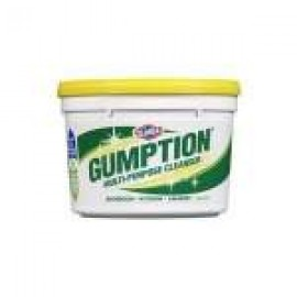 00750 CLOROX GUMPTION PASTE 500GM -  MULTI PURPOSE CLEANER
