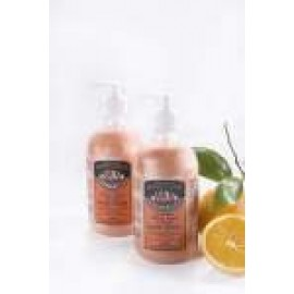 90012 CITRUS HONEYDEW GENTLE HANDWASH 500ML